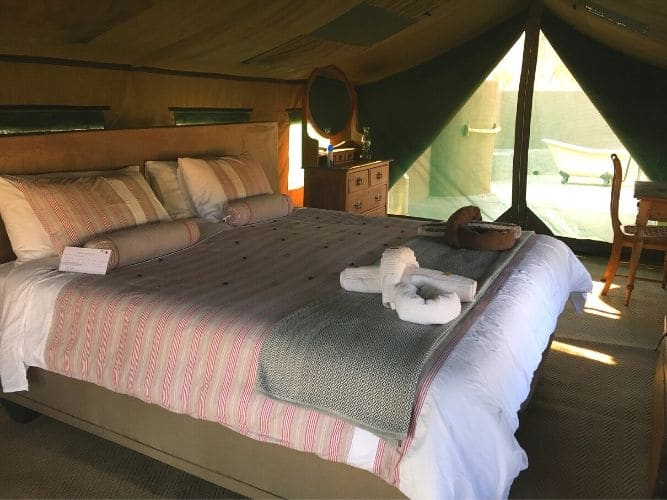 Tuli Inside Luxury Tent