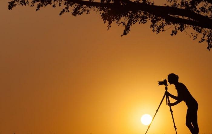Alexandra's Africa Video Gallery Bann