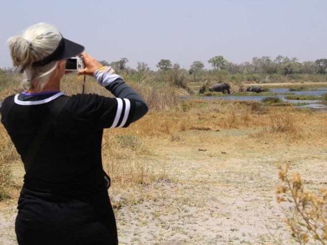 Mature female taking a photograph of elephants enjoying a dip in river whilst on Okavango game walk