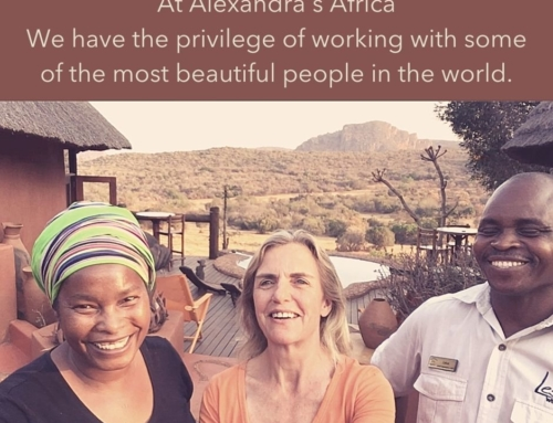 Our Sustainability MissionMake Travel Matter