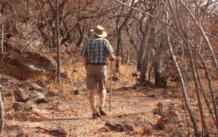 elderly man walking through the bushes with his walking stick