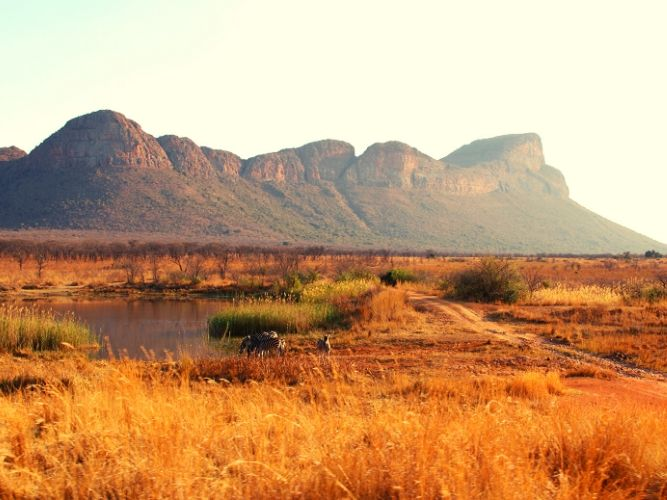 View out over the Savannah plains - to mountains in Background - Alexandra's Africa Getaway Safari