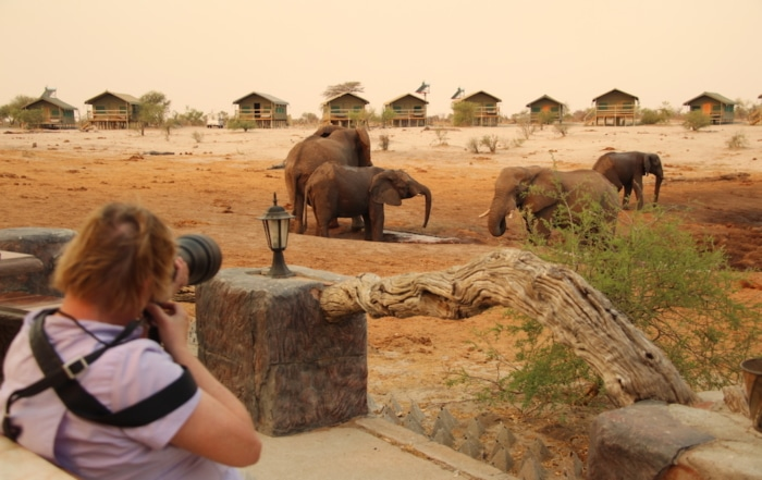 Photographer photographing elephants at waterhole in Botswana