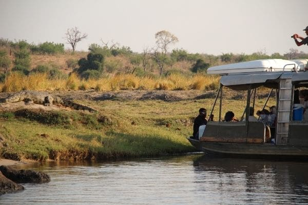 Guests in a boat on Chobe River enjoy a sighting of a crocodile on the river bank