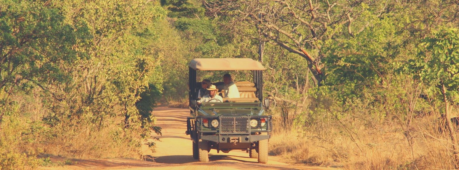 A game drive vehicle in Africa with a couple of tourists on board heading towards the camera on a dust road with thick bush on either side of the vehicle