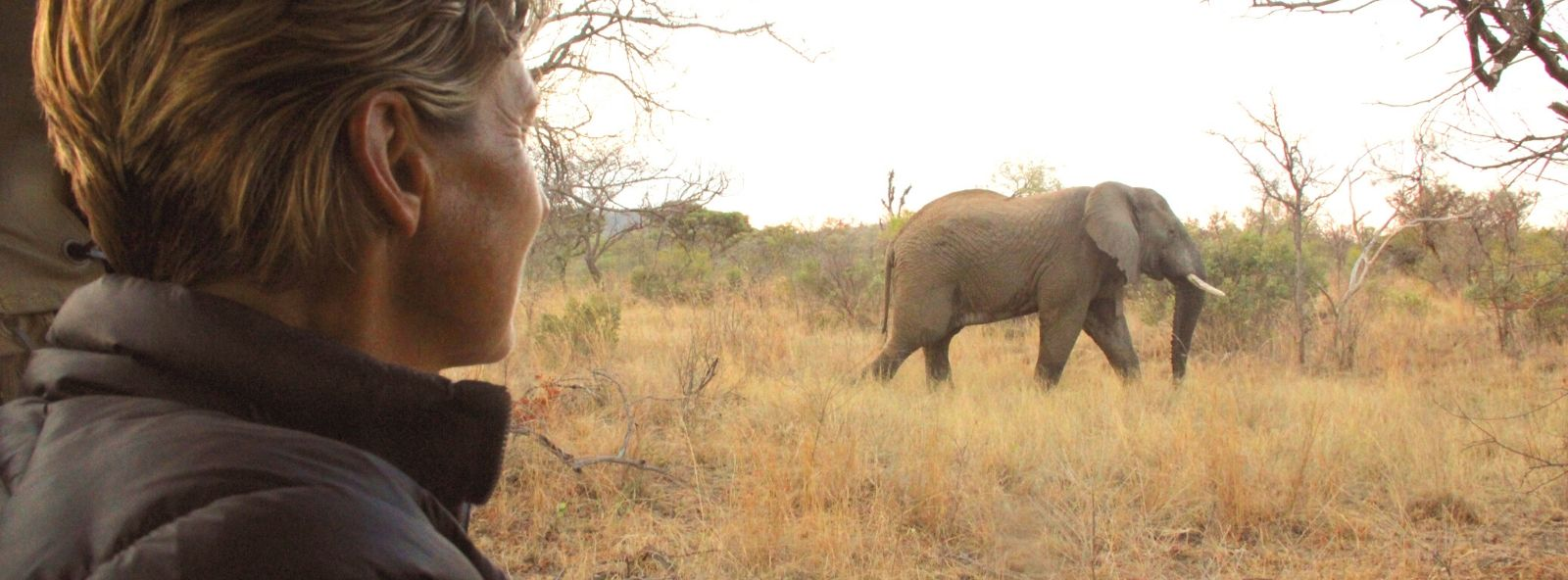Close up of Alexandra's Africa Guest on a Game Drive looking out at Elephant in the distance