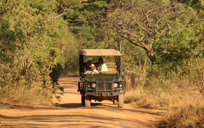 4x4 on track in africa