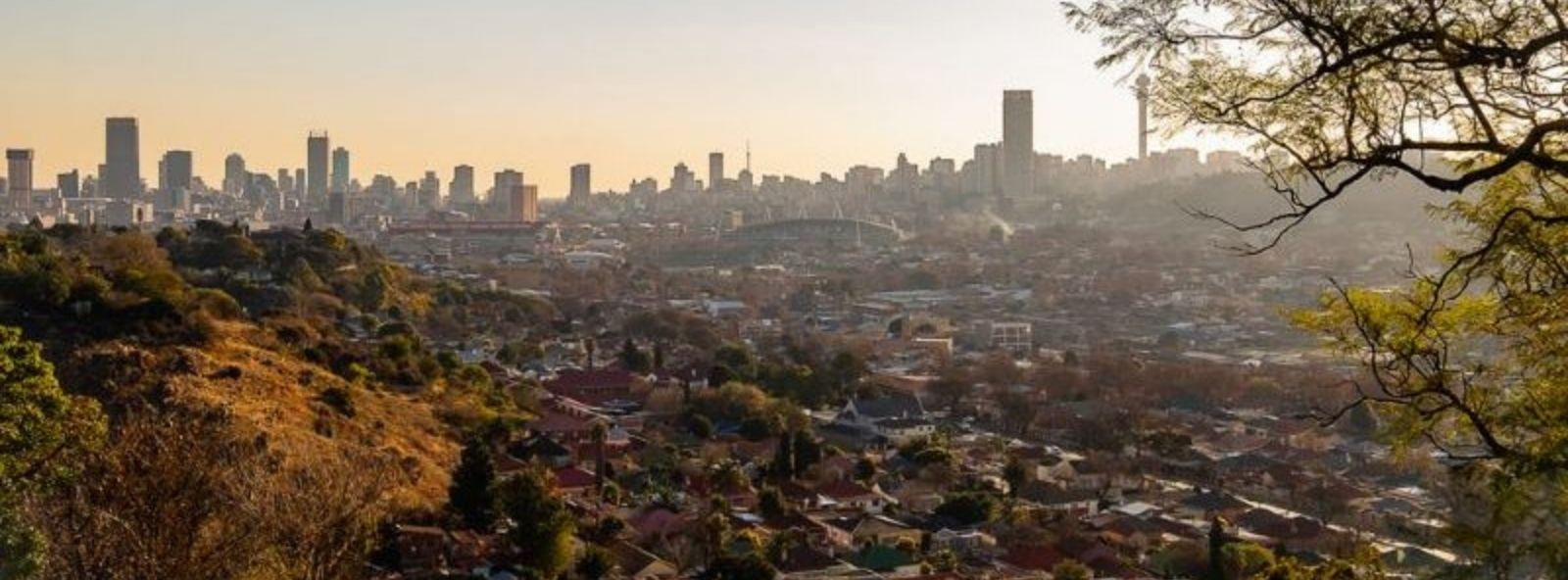 Johannesburg Skyline by Day