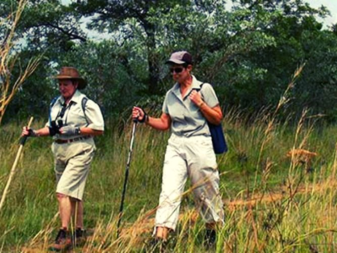 Alexandra's Africa Retreat Guests out on a trail walking side by side