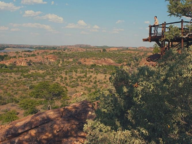 Looking out over the Limpopo River at Mapungubwe National Park