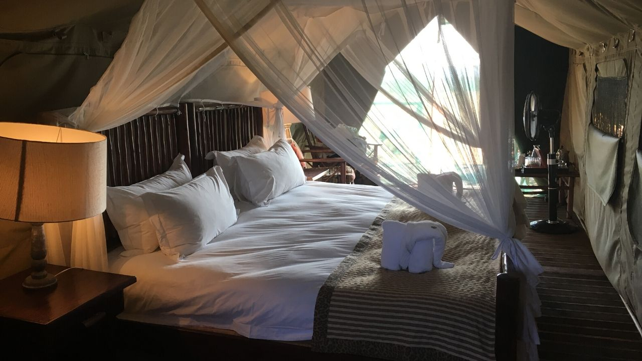 Picture taken inside a luxury safari tent looking over double bed in foreground with mosquito net to entrance of the tent