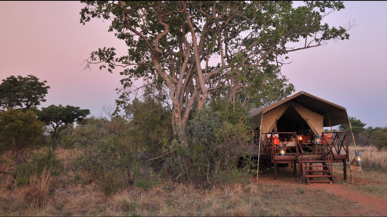 Classic Safari luxury tent from the outside at dusk with lanterns all around