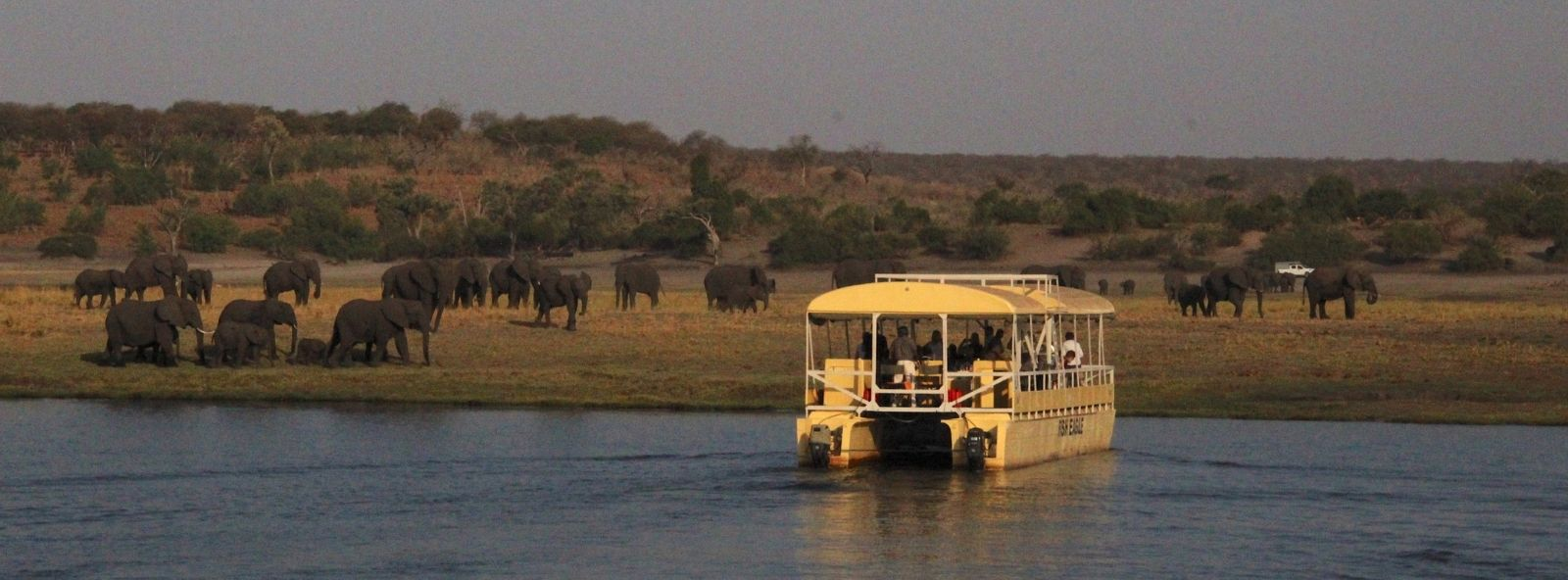 Sunset Game viewing by boat in Chobe - picture shows game viewing boat full of people on Chobe River enjoying a sighting of a herd of elephant on river bank