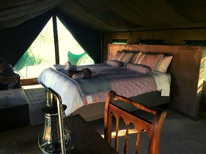 Inside guest tent - with double bed and desk in foreground with lamp
