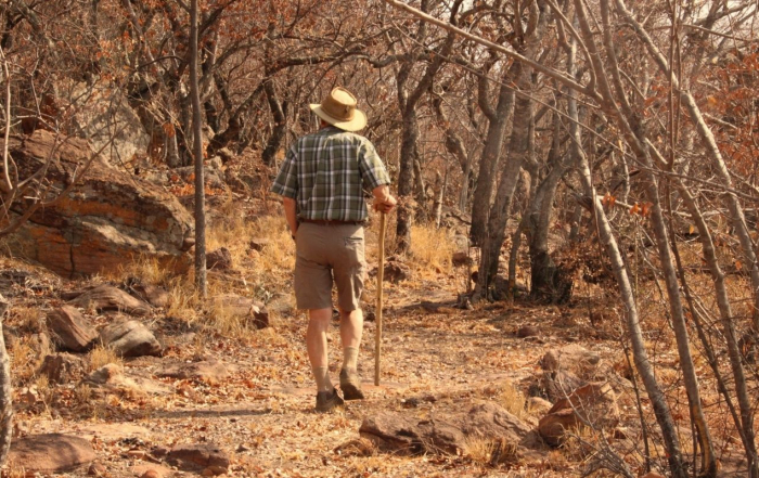 Mature man in floppy khaki hat, checked shirt and shorts out strolling, walking away from the camera, in the South African Bushveld