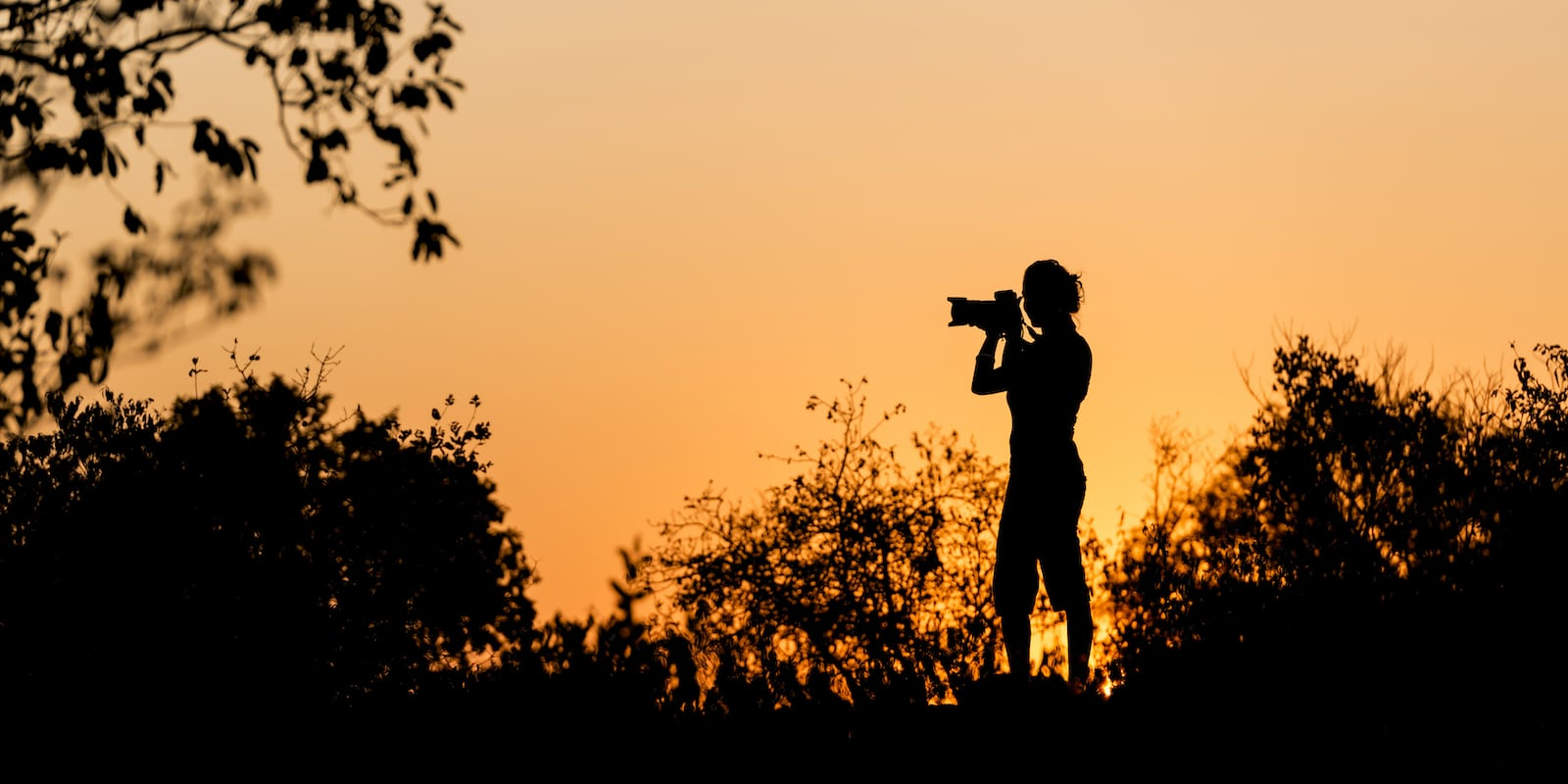 Woman taking a photograph with African Sunset background
